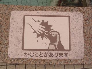 ペンギン怖い(笑)
